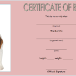 Birth Certificate Template For Microsoft Word