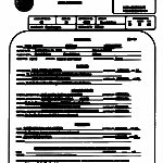 Birth Certificate Translation Template