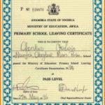 School Leaving Certificate Template