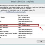 Workstation Authentication Certificate Template