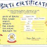 Build A Bear Birth Certificate Template