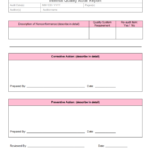 Section 37 Report Template