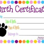 Toy Adoption Certificate Template