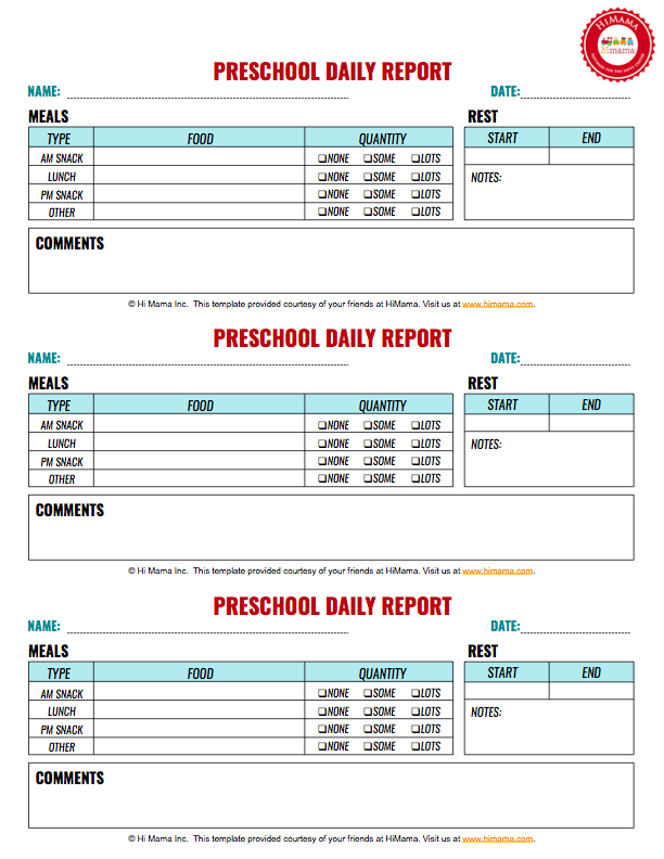 Daily Report Sheet Template