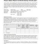 Monthly Project Progress Report Template