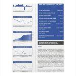 Real Estate Report Template