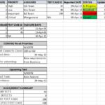 Testing Daily Status Report Template