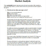Business Analyst Report Template