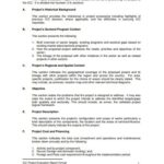 Project Implementation Report Template