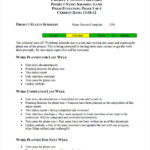 Weekly Test Report Template