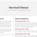 Resume Templates Microsoft Word