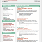 Resume Templates Download Free Word