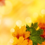 Powerpoint Templates Autumn
