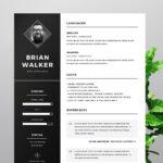 Resume Templates Ideas