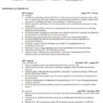 Resume Templates Multiple Jobs Same Company