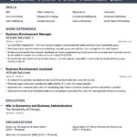 Resume Templates Social Work