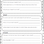 Animal Report Template 5th Grade